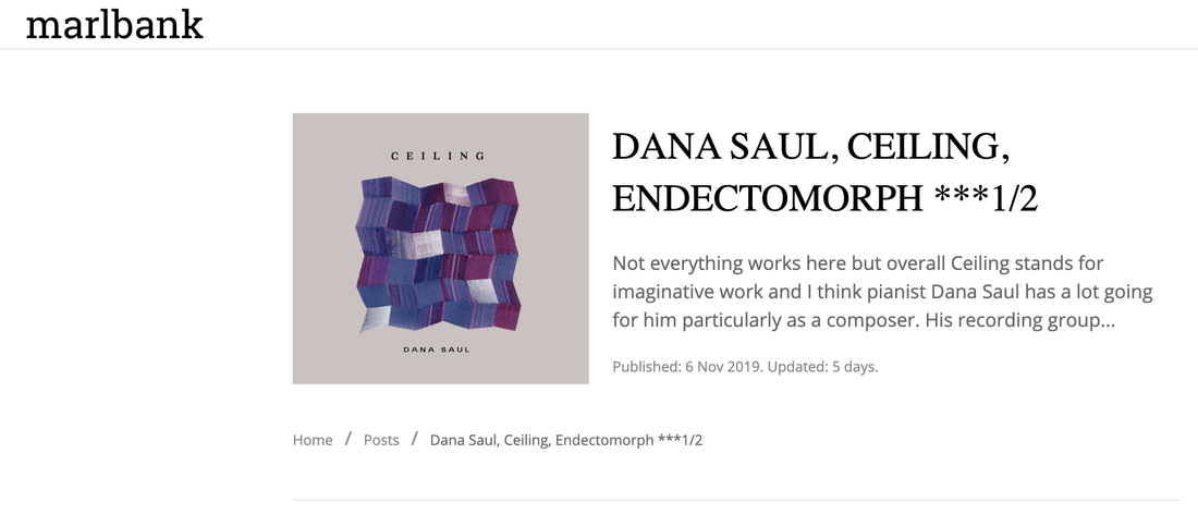 Dana Saul Ceiling Reviewed in Marlbank
